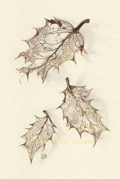 Sally-jane Perrin, SAA Members' Galleries, Page 2 Skeleton Drawings, Skeleton Tattoos, Art Drawings, Botanical Drawings, Botanical Illustration, Botanical Art, Nature Tattoos, Leaf Tattoos, Sleeve Tattoos