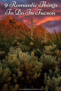 Tucson is an incredibly romantic city filled with unique things to do that combine natural beauty, vibrant culture, and a thriving arts scene. Drawing on our combined 24 years of living in Tucson, including journeying from our first date to marriage, we know a thing or two about the Tucson dating scene. Read on for nine incredibly romantic things that you can only do in Tucson, sure to make your heart swoon. #Tucson #romanticgetaway #Arizona #couplestrip