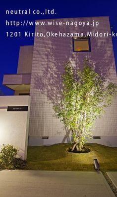 門柱とライトアップされたシマトネリコ Nagoya, Kirito, Garden, Plants, House, Garten, Home, Lawn And Garden, Gardens