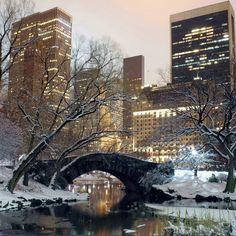 2048x2048 Preview wallpaper winter, park, america, bridge, new york 2048x2048