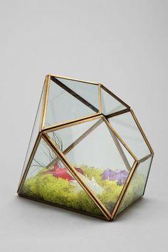 テラリウムとは透明な容器の中に植物を寄せ植えし、時にはフィギュアなどを用いて小さな自然空間を創り出すインテリアグリーンのこと。瓶やグラスの中に美しい緑を閉じ込めて、個性的なファンタジーワールドを創造してみませんか?