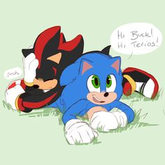 Sonic The Hedgehog, Hedgehog Movie, Silver The Hedgehog, Shadow The Hedgehog, Shadow Face, Sonic Funny, Classic Sonic, Pirate Art, Sonic Franchise