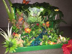Our Rainforest Diorama for kindergarten! We got everything except the animals at the dollar store!!