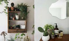 plantas e flores no banheiro