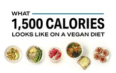 What Calories Looks Like (Protein Edition) Plant Based Protein, Plant Based Diet, Macros Diet, 300 Calories, Lunch Snacks, Dessert For Dinner, Diet And Nutrition, Yogurt Nutrition, Child Nutrition
