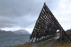 Fylkesveg 938 - Langøya Vesterålen (Norway | Flickr - Photo Sharing!