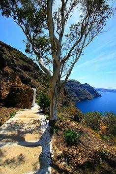 Caldeira, Santorini island, Cyclades,Greece