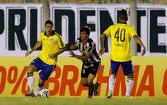 BotafogoDePrimeira: Sheik e Lúcio discutem, e Botafogo bate Palmeiras ...