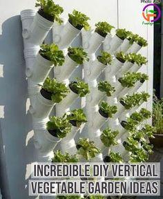 Incredible DIY Vertical Vegetable Garden Ideas
