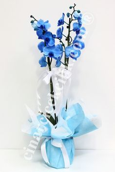 Mavi Orkide ( Blue Orkide ) Dünyanın en sevilen çiçekleri arasında birinci sırada olan orkide çiçekleri ile sevdiklerinize inanılmaz bir an yaşatmak ister misiniz? Mavi Orkide iki kök mavi orkideden oluşan son derece şık bir saksı çiçeğidir. İki kök Orkideler ortalama 70-80 cm boyunda olup özel olarak servis araçları ile taşınmaktadır. https://www.cinarcicekcilik.com.tr/mavi-orkide-blue-orkide-c-or112.html