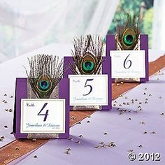 Peacock wedding table numbers    Keywords: #peacockweddings #jevelweddingplanning Follow Us: www.jevelweddingplanning.com  www.facebook.com/jevelweddingplanning/