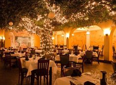 Firefly Dining Room, PCB Florida Hears its a great place to eat booked it for Valentine's Day dinner.