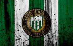 Download wallpapers 4k, FC Rubio Nu, grunge, Paraguayan Primera Division, soccer, football club, Paraguay, Rubio Nu, art, logo, stone texture, Rubio Nu FC