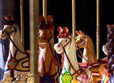 Horsing around with #canoncollective #canoncollectivegeelong #canon #geelong #geelongwaterfront #carousel #victoria #handcarved #restored by brettdean83 http://ift.tt/1JtS0vo