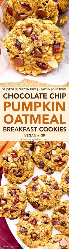 Pumpkin Chocolate Chip Oatmeal Breakfast Cookies (V, GF): Soft, chewy pumpkin oatmeal cookies packed with chocolate chips and pumpkin seeds. Perfect for breakfast or an afternoon treat! Recipe on BeamingBaker.com