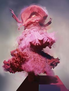 Christian Dior, designed by John Galliano, photo by Nick Knight*