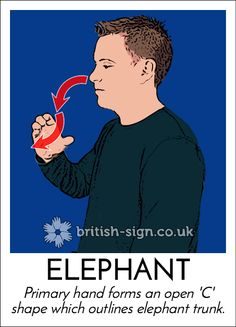 Sign of the Day - British Sign Language - Learn BSL Online English Sign Language, Sign Language Phrases, Sign Language Alphabet, British Sign Language, Learn Sign Language, Libra, Learn Bsl, Makaton Signs, Asl Signs