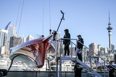 Sail World, America's Cup, Yachts, Worlds Largest, New Zealand, Sailing, Cruise, Boat, Water