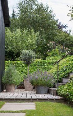 Back Gardens, Small Gardens, Outdoor Gardens, The Secret Garden, Garden Cottage, Garden Bar, Herb Garden, Garden Tools, Garden Planters