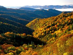 The Smoky Mountains, TN...would LOVE to go back again in the Fall