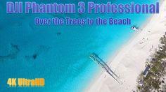 DJI Phantom 3 Over the Trees to the Beach