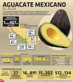 En el primer semestre de 2014, la exportación de aguacate mexicano aumentó 26 por ciento y se vendió en 21 países, principalmente en Estados Unidos. Este es el crecimiento comercial del producto nacional. #Infographic