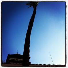 january skies Utility Pole, January, Sky, Spaces, Heaven, Heavens