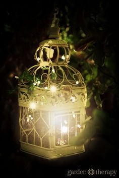 Outdoor Lighting Ideas for the Garden - - Birdcage outdoor garden light – Let the birds fly free and fill a birdcage with string lights! See the project Instructions plus 20 more ideas for creative outdoor lighting! Outdoor Garden Lighting, Landscape Lighting, Outdoor Gardens, Solar Chandelier Outdoor, Garden Lighting Ideas, Outside Lighting Ideas, Outdoor Fairy Lights, Outdoor Projects, Garden Projects