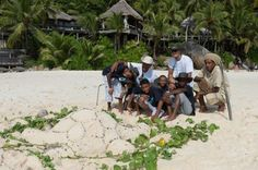 A 'turtle' on the beach for World Turtle Day! #NorthIslandSeychelles