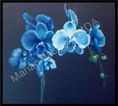 Blue Orchids Colored Pencil  Tutorial