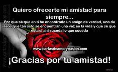 Pasion com amistad www Compañerismo, pasión