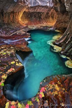 Subway Pool - Zion National Park, Utah. This is just amazing. The first part looks like a heart.