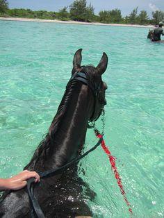 bucketlist: horse back riding at the beach