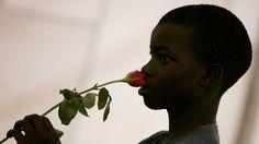 """69 - 2014 - 22 de Marzo - El olfato humano podría distinguir cerca de un billón de olores - Investigadores del Laboratorio de Neurogenética de la Universidad de Rockefeller, de Nueva York, publicaron un trabajo en la revista """"Science"""", en donde sostienen que el olfato del ser humano puede distinguir al menos un billón de diferentes olores, dejando a la luz una nueva maravilla del cerebro humano."""
