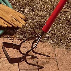 Professional combination cultivator/weeder