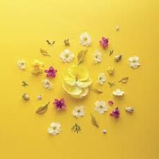 Image result for yellow aesthetics