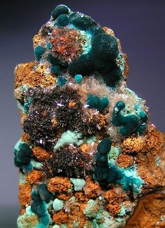 Deep green Rosasite crystal tufts with Plattnerite-included Hemimorphite and light green botryoids of Aurichalcite