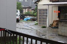 里親さんブログ夏の家出病;; - http://iyaiya.jp/cat/archives/77955