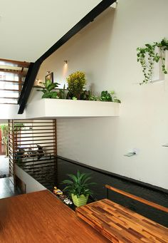 Nhà K   Handhome Interior Garden, Interior Exterior, Interior Design, Space Architecture, Sustainable Architecture, Beautiful Interiors, Beautiful Homes, Style Tropical, Small Condo