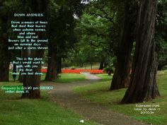 Down Avenues( poem of caring and love) Feeling Down, How Are You Feeling, Warm Showers, Literature, Shed, Poetry, Country Roads, Day, Plants