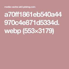 a70ff1861eb540a44970c4e871d5334d.webp (553×3179)