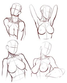 An awesome fuck-ton of female anatomy references. [From various sources]