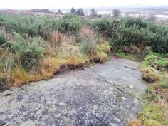 Rock Art is where humans have made markings on natural stone, on the Isle of Doagh these date from the Bronze Age.