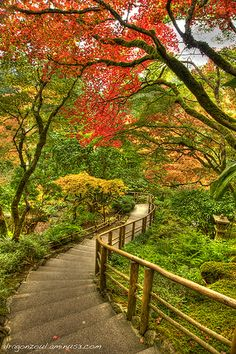 staircase into the Butchart Gardens in autumn, Victoria, British Columbia, Canada