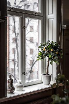 Stilsäkert sekelskifte på Norrtullsgatan | Henrik Nero, Residence