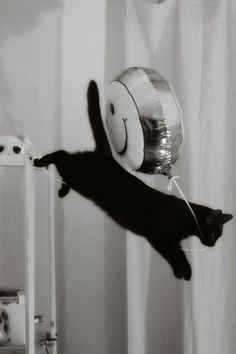 Balloon Thief