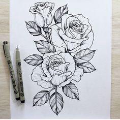 rosas....
