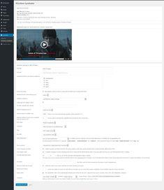 CyberSyn - RSS Wordpress Plugins, Seo