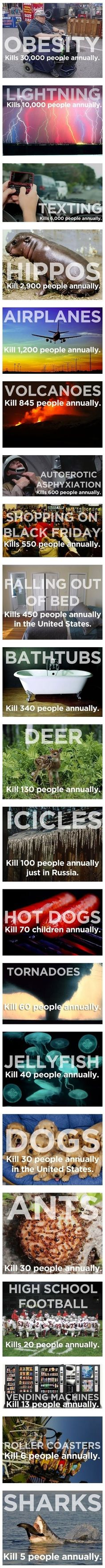 Things that kill more people than sharks. Dont know if any one it is true, but funny as hell none the less