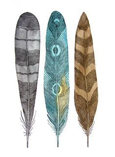 feathers. patterns.